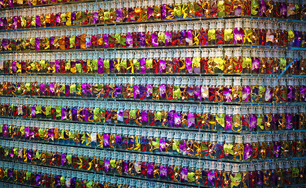 revista-magazine-visualmerchandising-escaparatismo-hangers-colette-azuma-makoto-flores-vishopmag-001
