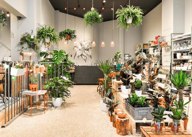 revista-magazine-escaparates-retail-design-de-balkonie-vishopmag-001