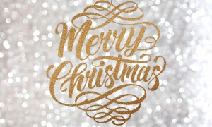revista-magazine-visualmerchandising-merry-christmas-vishopmag-2016-escaparate-retaildesign-vishopmag-001