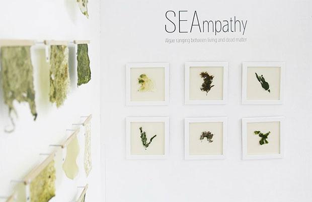 vishopmag-revista-escaparates-escaparatismo-visualmerchandising-seampathy-materiales-design-daniel-elkayam-seampathy-vegan-materials-08122019-(2)