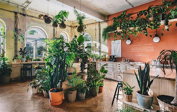 vishopmag-revista-magazine-escaparatismo-visualmerchandising-plantas-The-Home-of-Tomorrow-IKEA-5