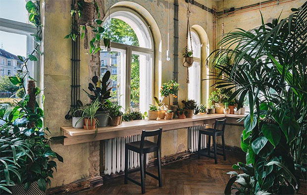 vishopmag-revista-magazine-escaparatismo-visualmerchandising-plantas-The-Home-of-Tomorrow-IKEA-6