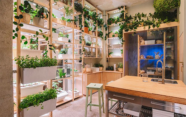 vishopmag-revista-magazine-escaparatismo-visualmerchandising-plantas-The-Home-of-Tomorrow-IKEA-8