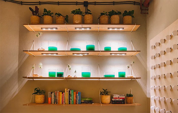 vishopmag-revista-magazine-escaparatismo-visualmerchandising-plantas-The-Home-of-Tomorrow-IKEA-9